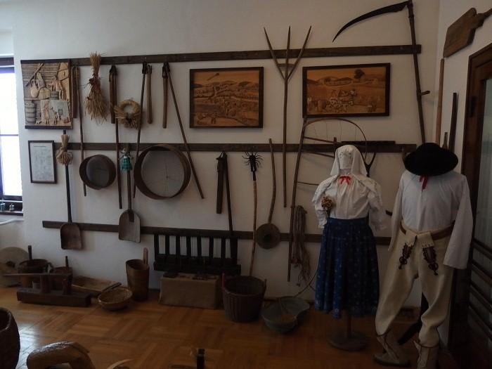 220. Muzeum