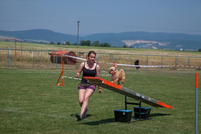 agility 8