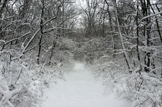 sneh piestany foto slavo tomik 5