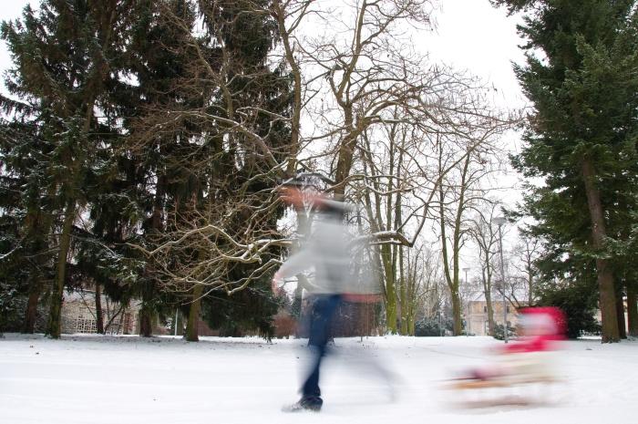 zima sneh 4